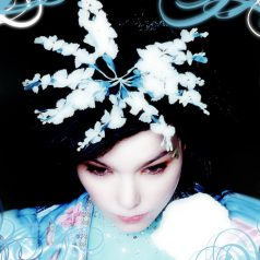 Bjork__in_Ice__by_porcelainrhapsody